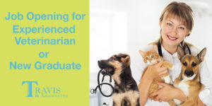 Job Opening for Experienced Veterinarian or New Graduate in Franklin, NC