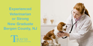 Experienced Veterinarian or Strong New Veterinary Graduate Bergen County-Ramsey, NJ